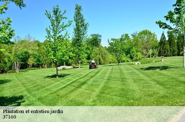 Entretien jardin à Neuilly Le Brignon tél: 02-85-73-52-88