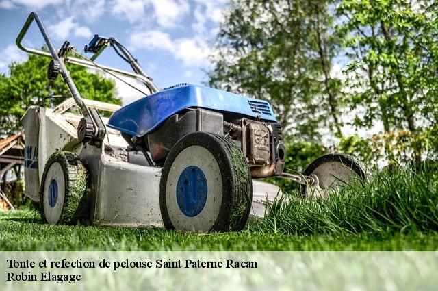 Tonte et refection de pelouse  saint-paterne-racan-37370 Robin Elagage
